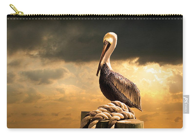 Pelican Carry-all Pouch featuring the photograph Pelican After A Storm by Mal Bray