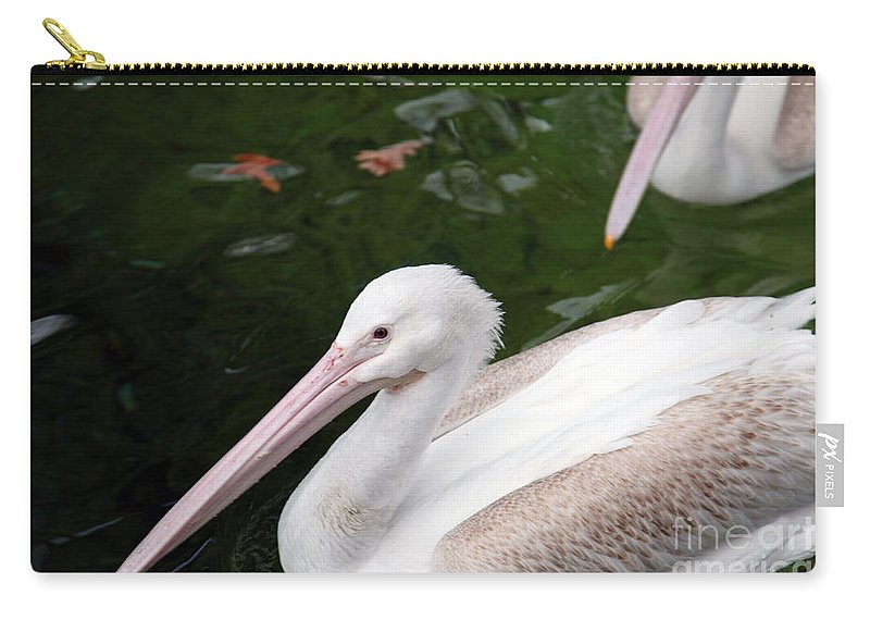 Pelican Carry-all Pouch featuring the photograph Pelican by Amanda Barcon
