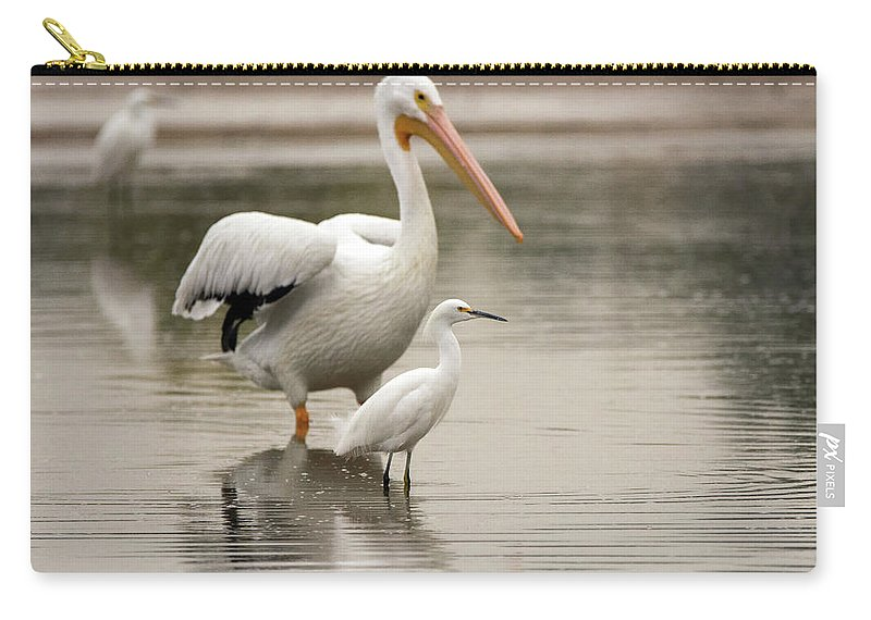 Pelican Carry-all Pouch featuring the photograph Pelican And Snowy Egret 6459-113017-1cr by Tam Ryan