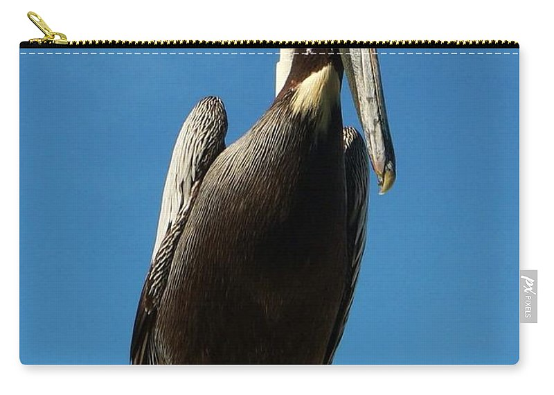 Pelican Carry-all Pouch featuring the photograph Pelican Dreams by Melissa Haney