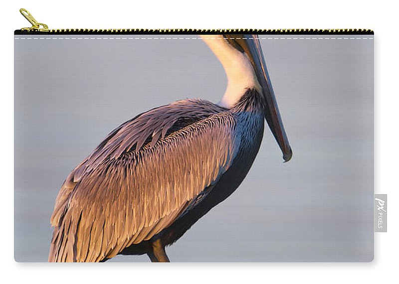 Pelican Carry-all Pouch featuring the photograph Pelican Perch by Janet Fikar