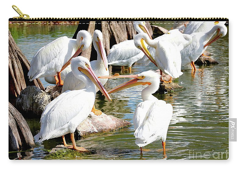 Fighting Birds Carry-all Pouch featuring the photograph Pelican Squabble by Carol Groenen