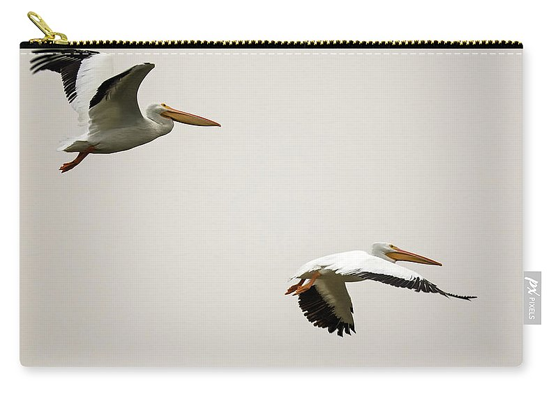 Pelicans Carry-all Pouch featuring the photograph Pelicans 6498-113017-2cr by Tam Ryan