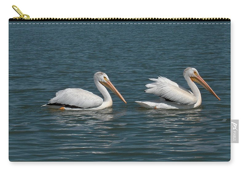 Wild Animals Birds Nature Lake Water Pelicans Carry-all Pouch featuring the photograph Pelicans by Andrea Lawrence