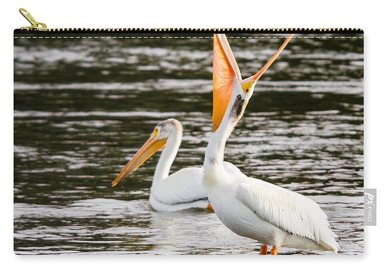 Birds Carry-all Pouch featuring the photograph Pelicans Fishing by John Trax