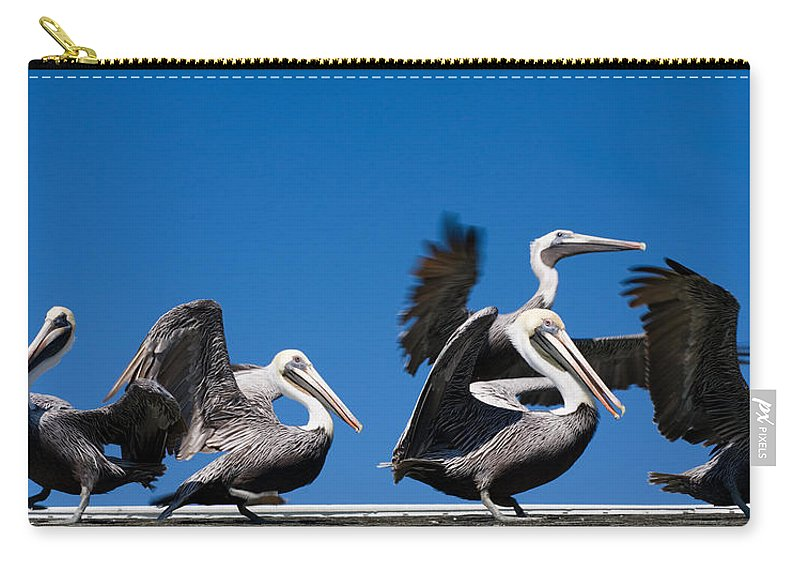 Pelicans Carry-all Pouch featuring the photograph Pelicans Take Flight by Mal Bray