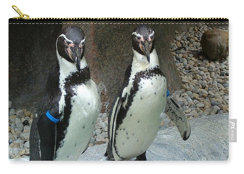 Penguin Carry-all Pouch featuring the photograph Penguin Duo by Sara Raber