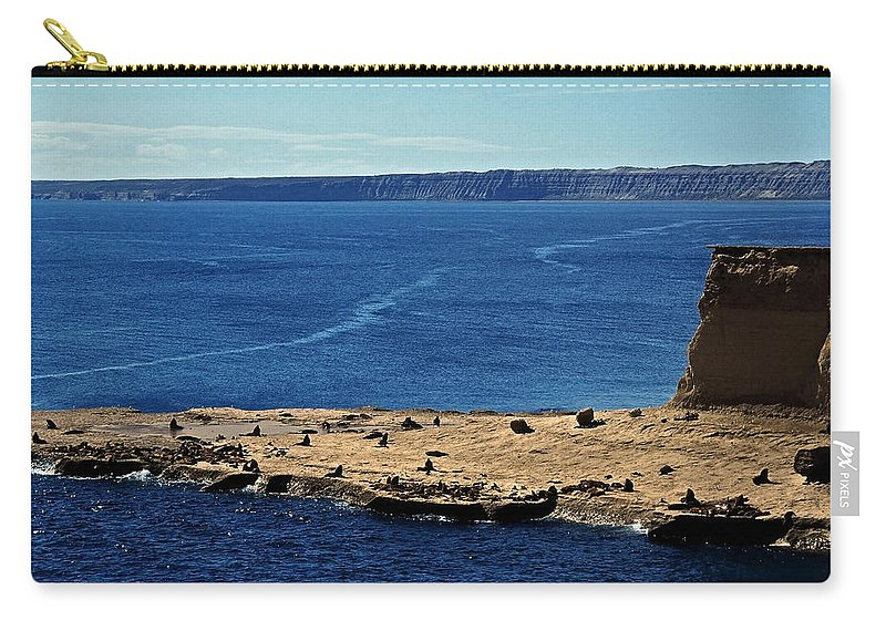 South America Carry-all Pouch featuring the photograph Peninsula De Valdez by Juergen Weiss