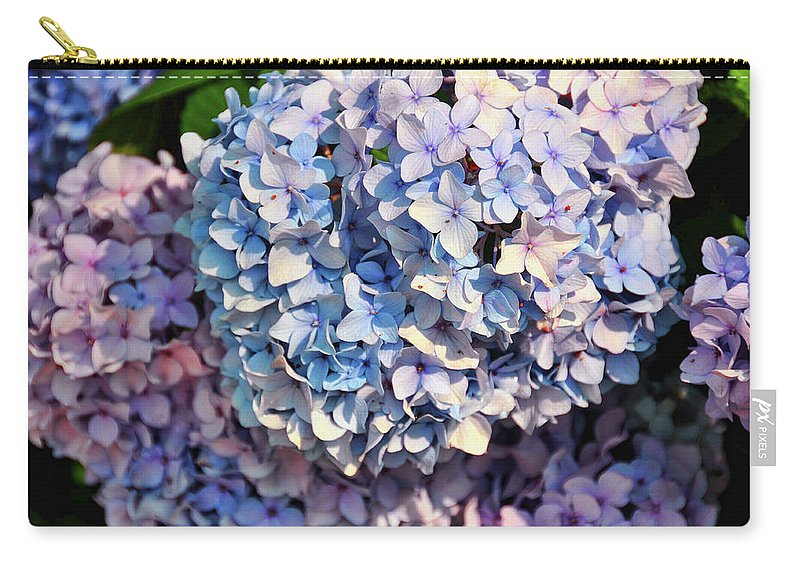 Hydrangea Carry-all Pouch featuring the photograph Penny Mac by JAMART Photography