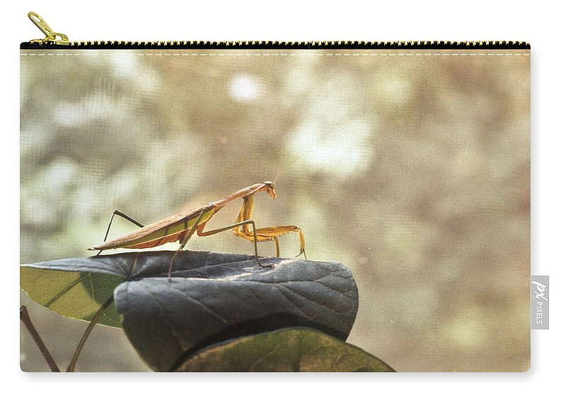 Praying Carry-all Pouch featuring the photograph Pensive Mantis by Douglas Barnett