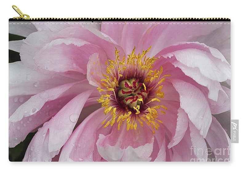 Flower Carry-all Pouch featuring the photograph Peonie In Pink by Deborah Benoit