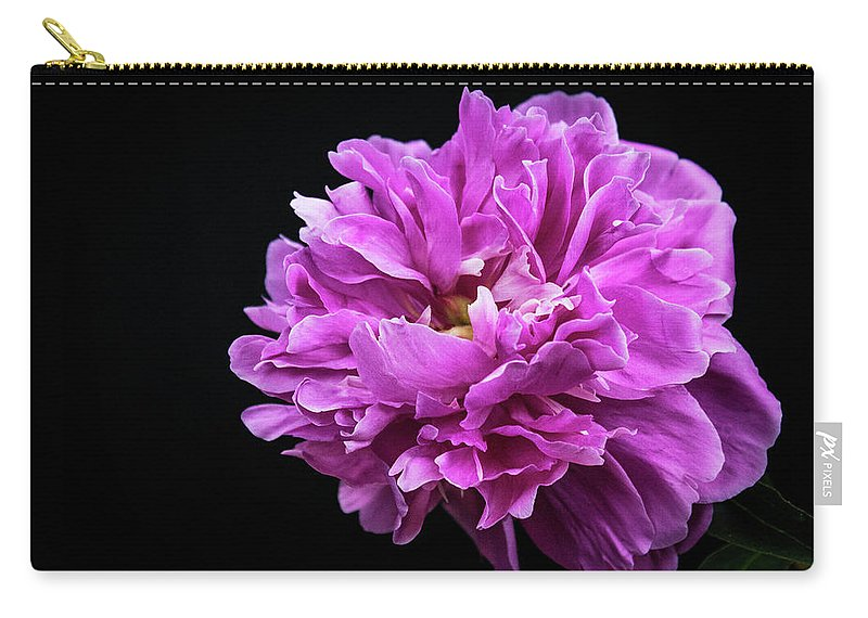 Peonies Carry-all Pouch featuring the photograph Peonies by Wayne Danielson