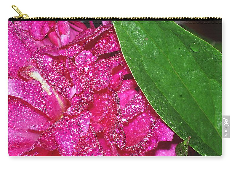 Peony Carry-all Pouch featuring the photograph Peony And Leaf by Nancy Mueller