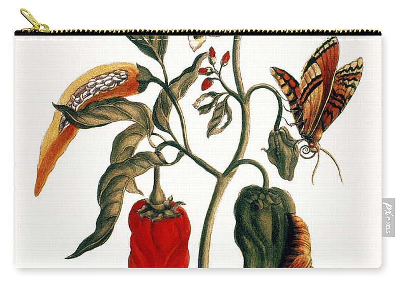1726 Carry-all Pouch featuring the photograph Pepper Plant by Granger