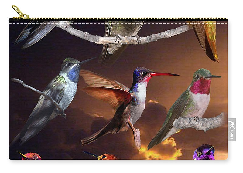 Hummingbird Collage Carry-all Pouch featuring the photograph Perched Hummingbird Collage by David Salter