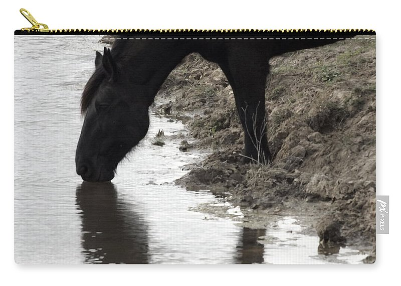 Percheron Draft Horse Carry-all Pouch featuring the photograph Percheron Kiss by Julie Pappas
