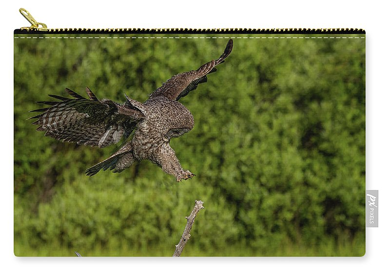 Great Grey Owl Carry-all Pouch featuring the photograph Perfect Form by Yeates Photography