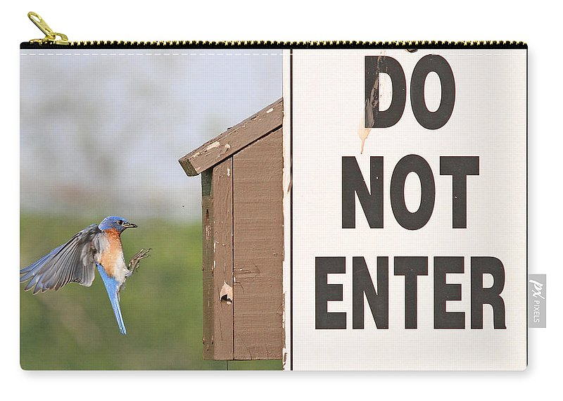 Nature Carry-all Pouch featuring the photograph Perfect Nesting Box 2 by Mike Dickie