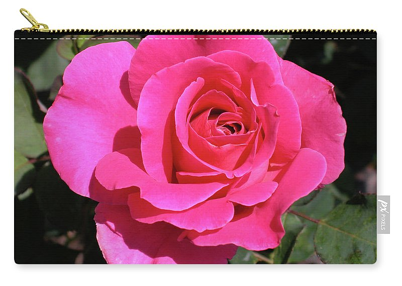 Pink Carry-all Pouch featuring the photograph Perfect Pink Rose by Michael Bessler