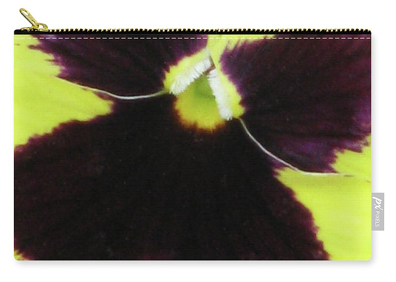 Pansy Carry-all Pouch featuring the photograph Perfectly Pansy 05 by Pamela Critchlow