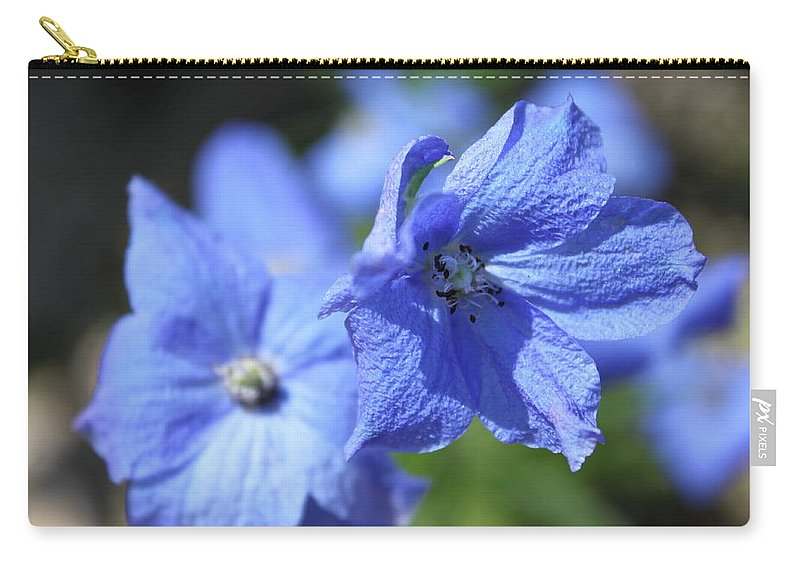 Flower Carry-all Pouch featuring the photograph Periwinkle Flower by Lauri Novak