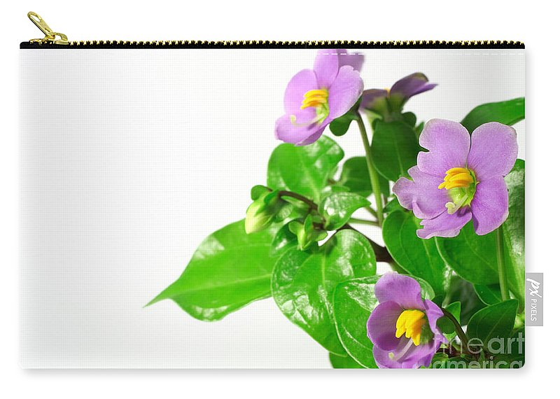 Closeup Carry-all Pouch featuring the photograph Persian Violets by Gaspar Avila