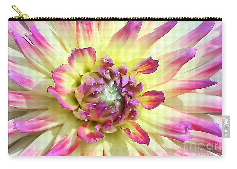 Flower Carry-all Pouch featuring the photograph Petal Burst by Teresa Zieba