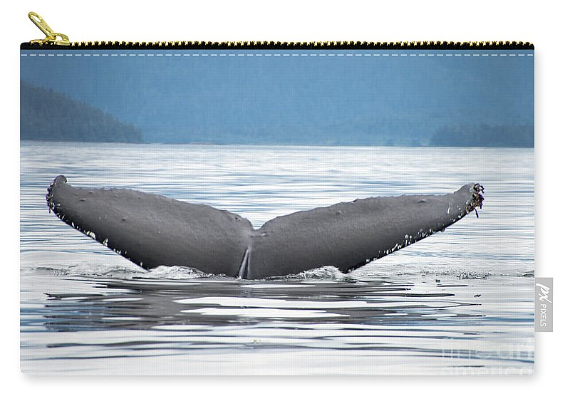 Carry-all Pouch featuring the photograph Petersburg Ak Whale Tale 2 by Louise Magno