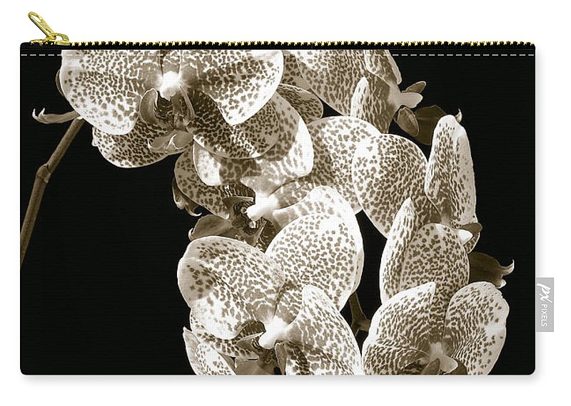 Phalaenopsis Carry-all Pouch featuring the photograph Phalaenopsis by Steven Sparks