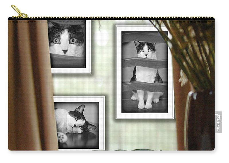 Pet Carry-all Pouch featuring the photograph Phat Cat by Jill Reger