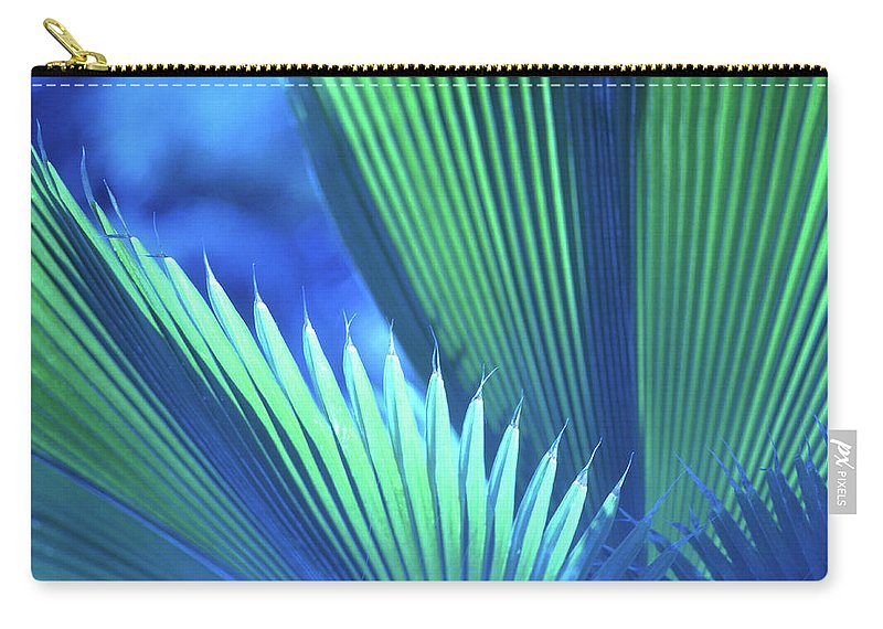 Nature Carry-all Pouch featuring the photograph Photograph Of A Royal Palm In Blue by John Harmon