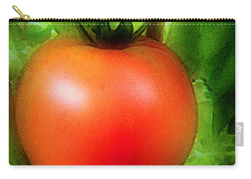 Garden Carry-all Pouch featuring the painting Picture Perfect by RC DeWinter