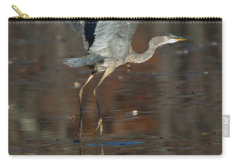 Heron Carry-all Pouch featuring the photograph Pieds Dans L Eau by Jean-Pierre Ducondi