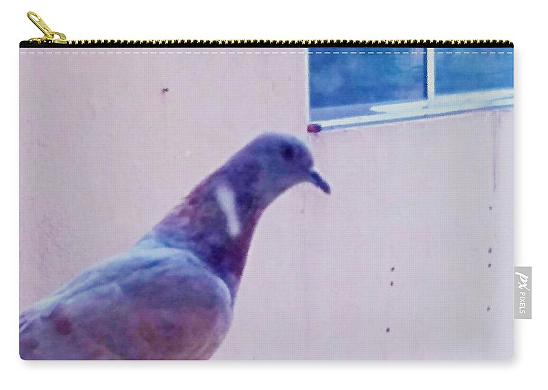 Pigeon Carry-all Pouch featuring the photograph Pigeon by Nilu Mishra