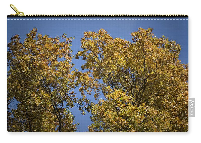 Fall Carry-all Pouch featuring the photograph Pin Oaks In The Fall No 1 by Teresa Mucha