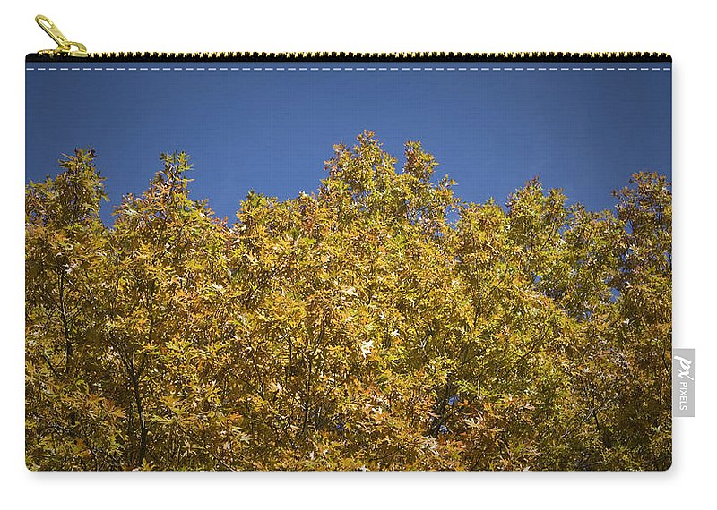 Fall Carry-all Pouch featuring the photograph Pin Oaks In The Fall No 2 by Teresa Mucha