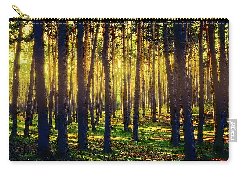Beautiful Carry-all Pouch featuring the photograph Pine Forest In La Boca Del Asno-segovia-spain by Hans Schrodter