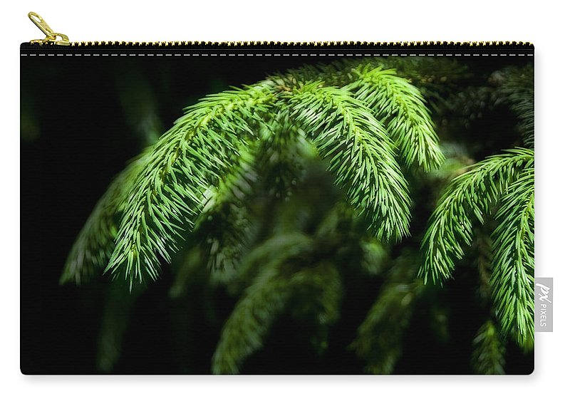 Pine Carry-all Pouch featuring the photograph Pine Tree Brunch by Svetlana Sewell