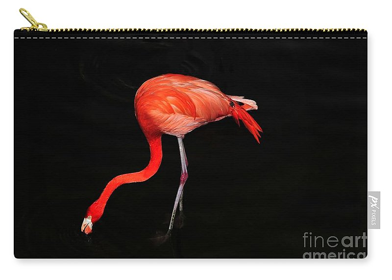 Flamingo Carry-all Pouch featuring the photograph Pink And Black by David Lee Thompson