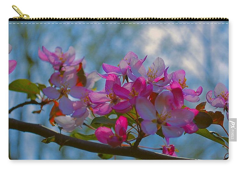 Crab Carry-all Pouch featuring the photograph Pink And Blue by Bonfire Photography