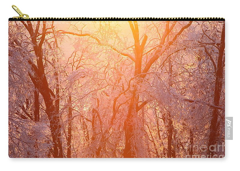 Pink Carry-all Pouch featuring the photograph Pink And Gold by Nadine Rippelmeyer