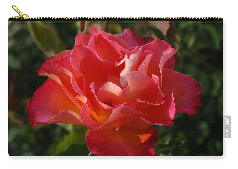 Flower Carry-all Pouch featuring the photograph Pink And Gold Rose by Teresa Stallings