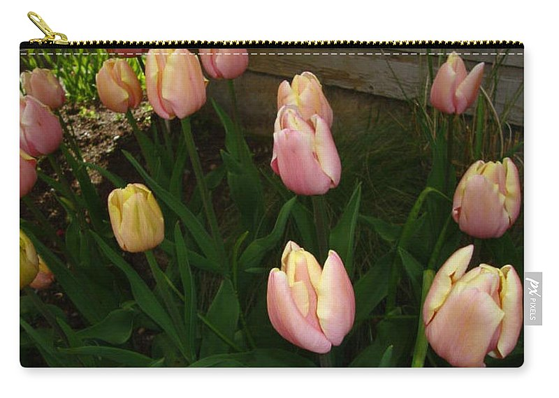 Flower Carry-all Pouch featuring the photograph Pink And Yellow Tulips by Jay Milo