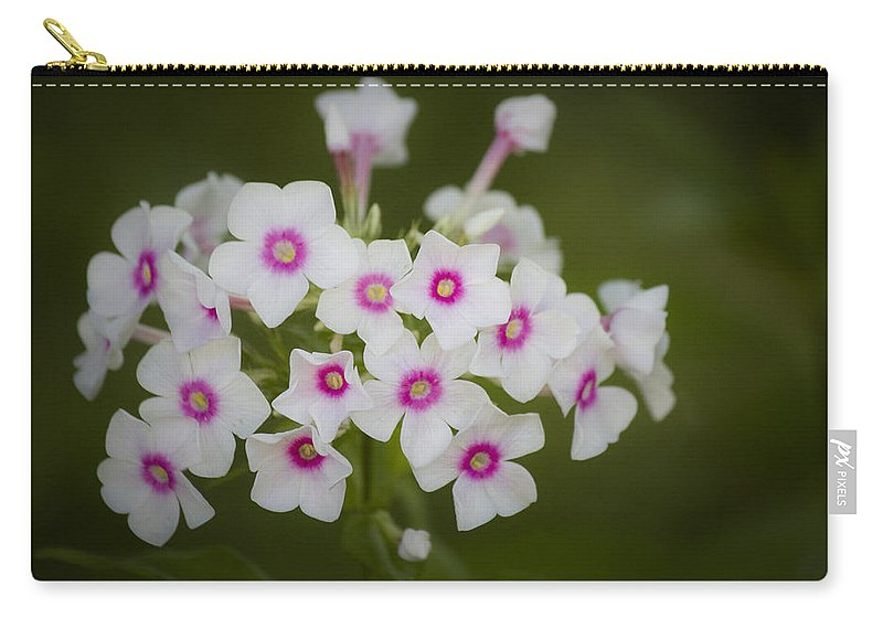 Garden Carry-all Pouch featuring the photograph Pink Bright Eyes Garden Phlox by Teresa Mucha
