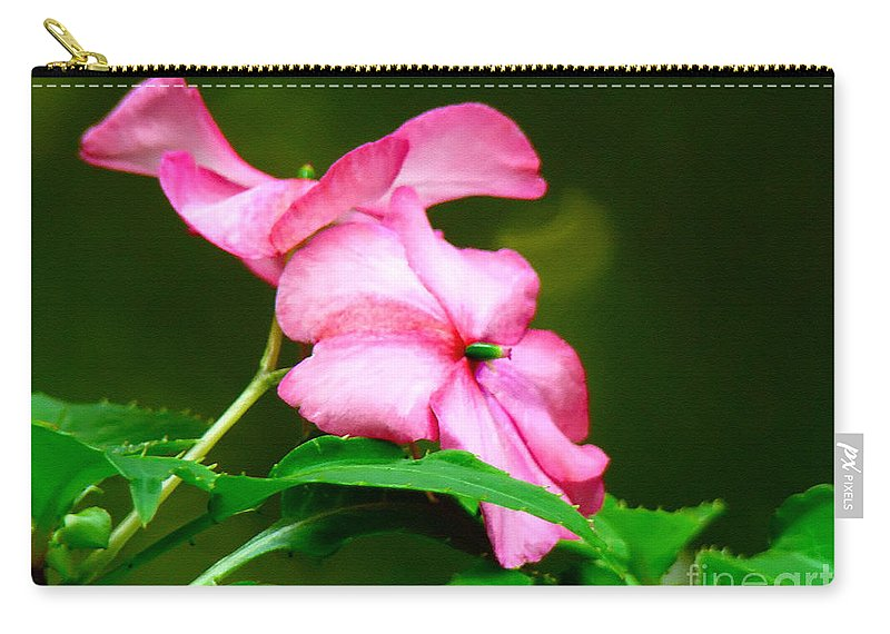 Flower Carry-all Pouch featuring the photograph Pink Busy Lizzies by Sue Melvin