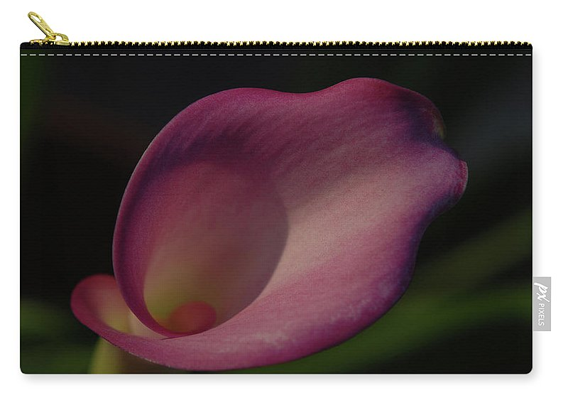 Callalily Carry-all Pouch featuring the photograph Pink Calla Lily - Horizontal by Gwen Juarez