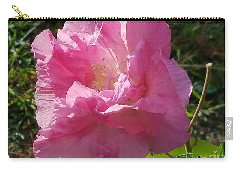 Pink Confederate Rose Carry-all Pouch featuring the photograph Pink Confederate Rose by Maria Urso