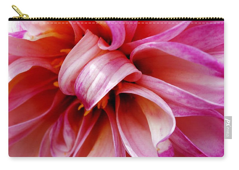 Flower Carry-all Pouch featuring the photograph Pink Dahlia by Marilyn Hunt