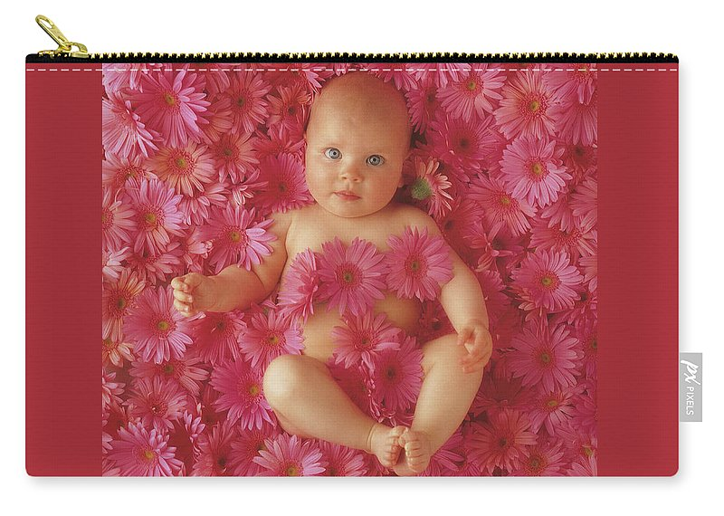 Daisies Carry-all Pouch featuring the photograph Pink Daisies by Anne Geddes