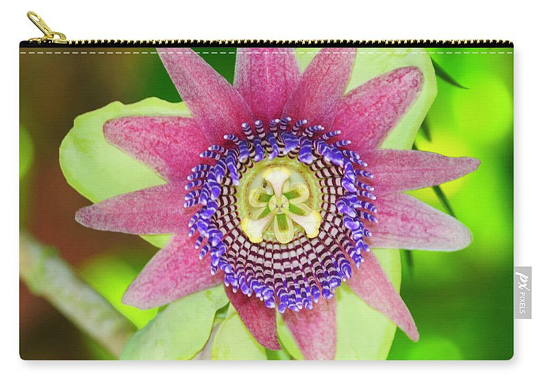 Passiflora Carry-all Pouch featuring the photograph Pink Delight by Genevieve Vallee